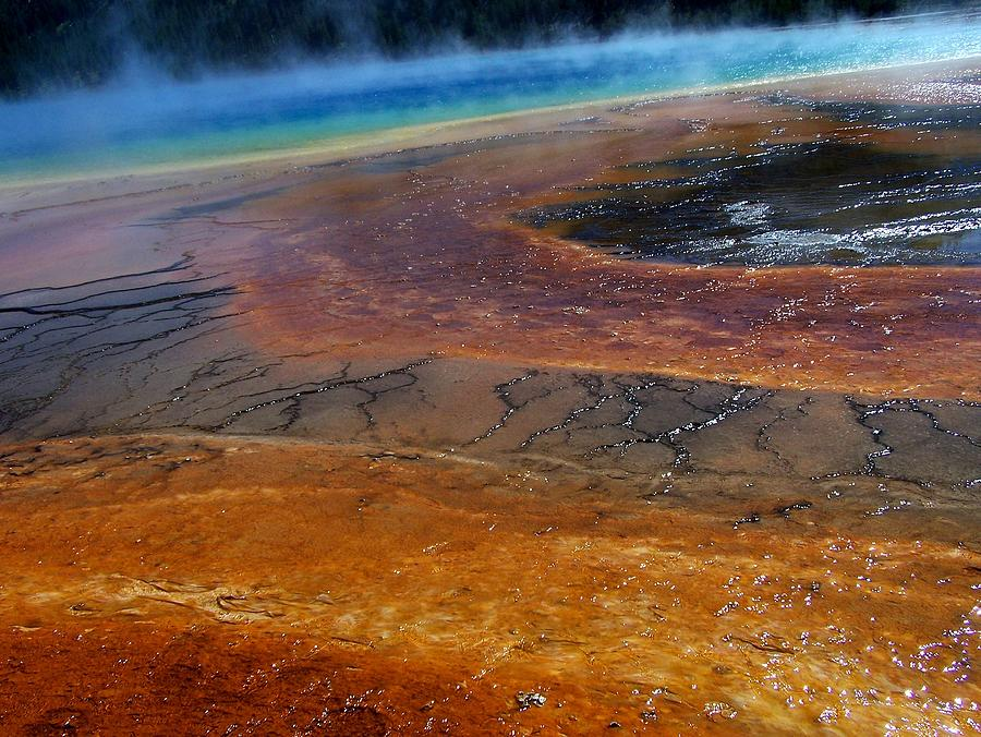 Majestic Grand Prismatic Spring Photograph by Daisy Spilker