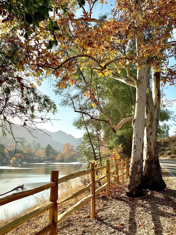 Malibou Lake Vista Photograph