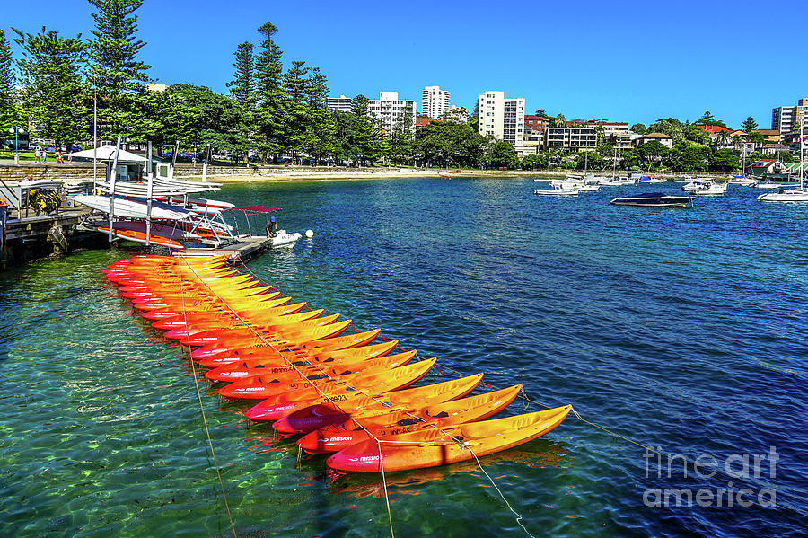 Manly Harbour Kayaks by David Meznarich