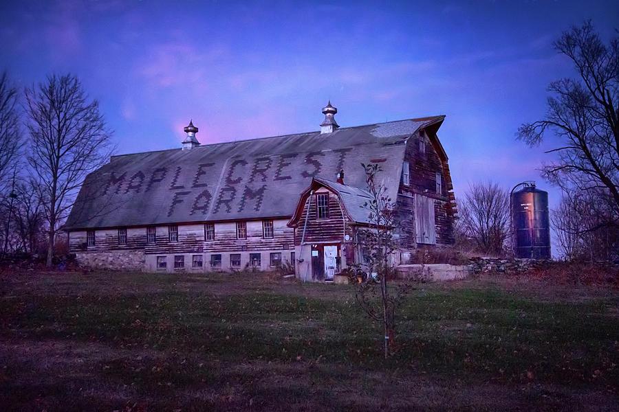 Maple Crest Farm - Ct Photograph