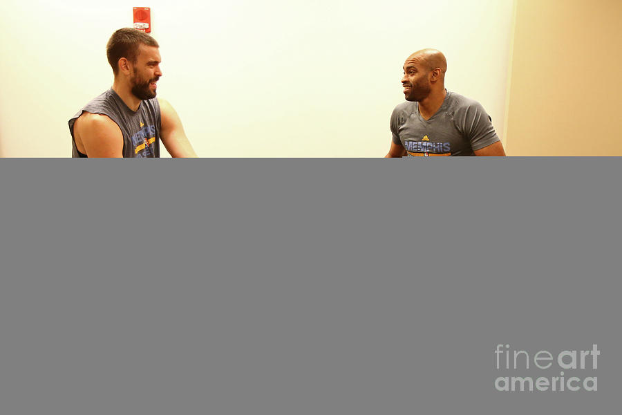 Marc Gasol and Vince Carter Photograph by Nathaniel S. Butler