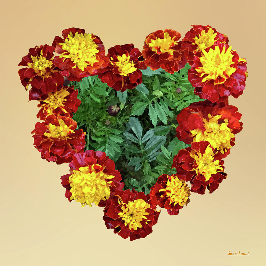 Marigold Heart II by Susan Savad