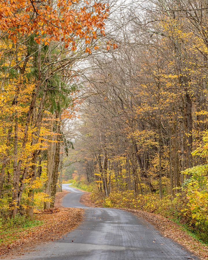 Markham Hollow Road by Rod Best