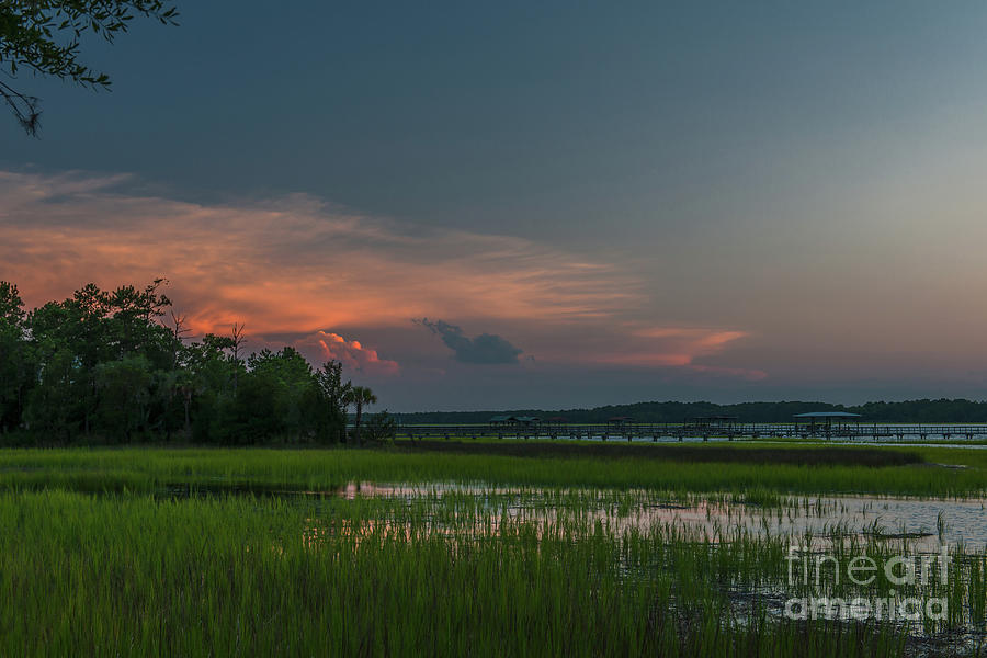 Marsh Grass Dancing With The Tides Photograph