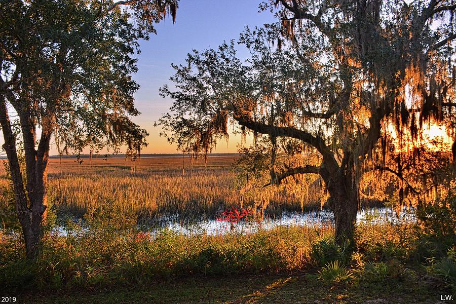 Marsh Sunrise by Lisa Wooten