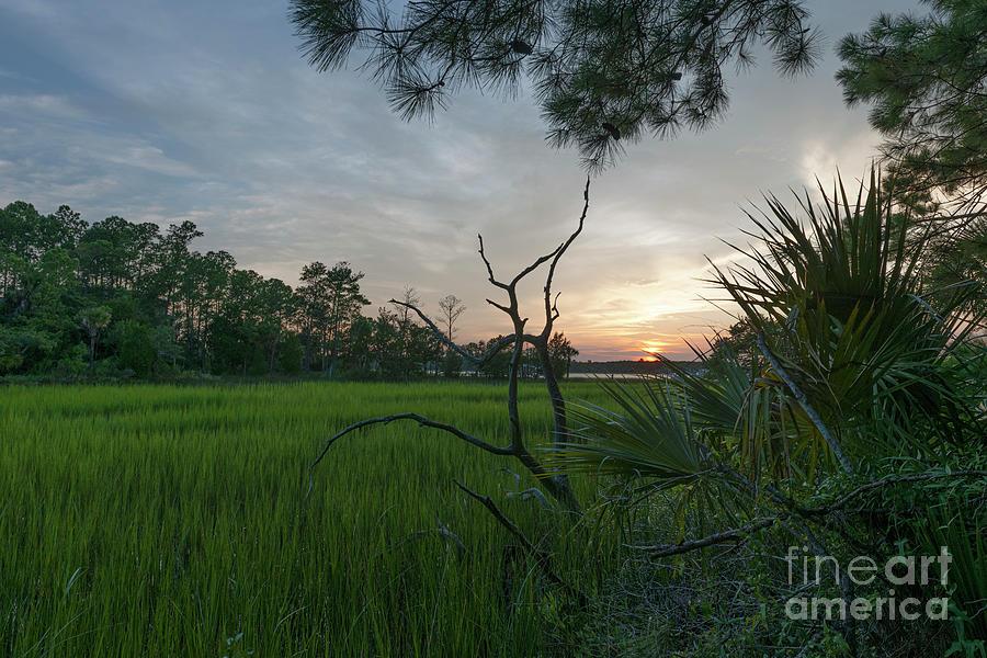 Marsh Sunset - Rivertowne On The Wando - Mount Pleasant South Carolina Photograph