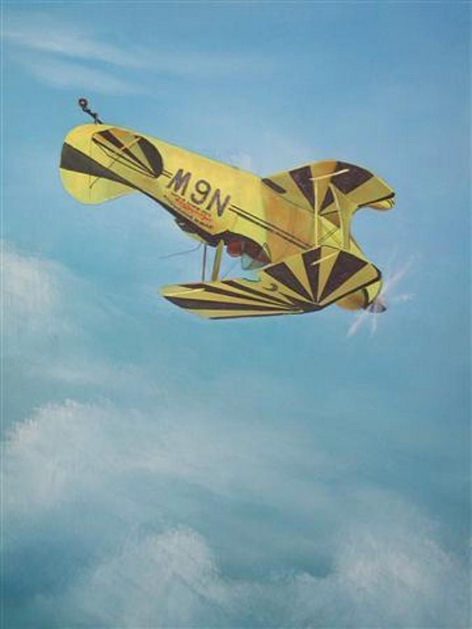 Mary Gaffaney Rc Plane Painting