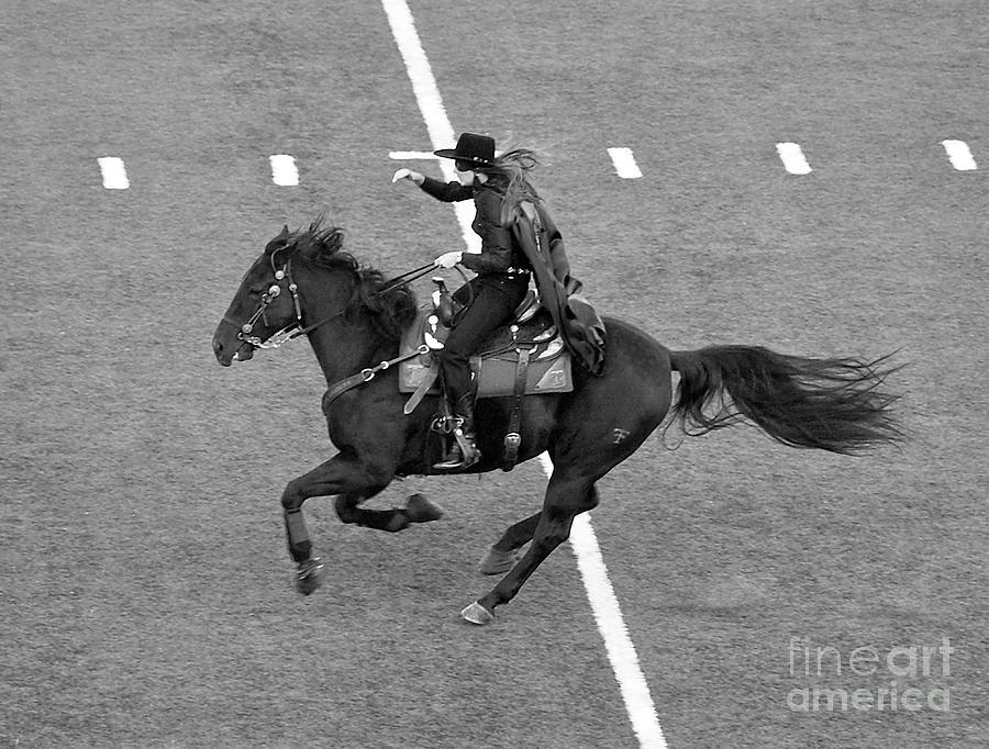 Masked Rider at Halftime by Mae Wertz