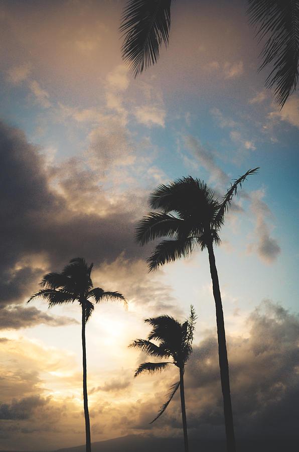 Maui Mood Photograph