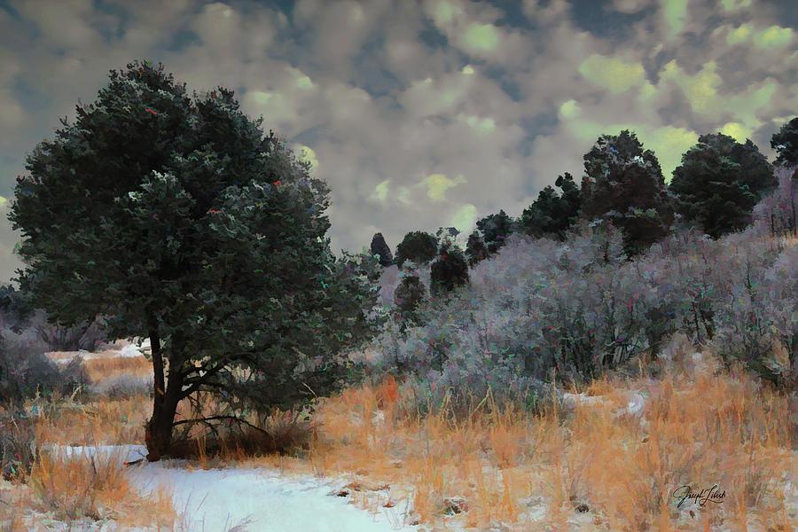 Garden Of The Gods Digital Art - Meadow_Magic_20210321 by Joseph Liberti