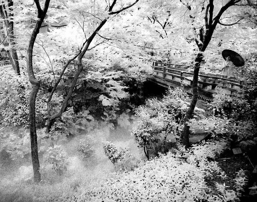 meditation in white by Rochelle Berman