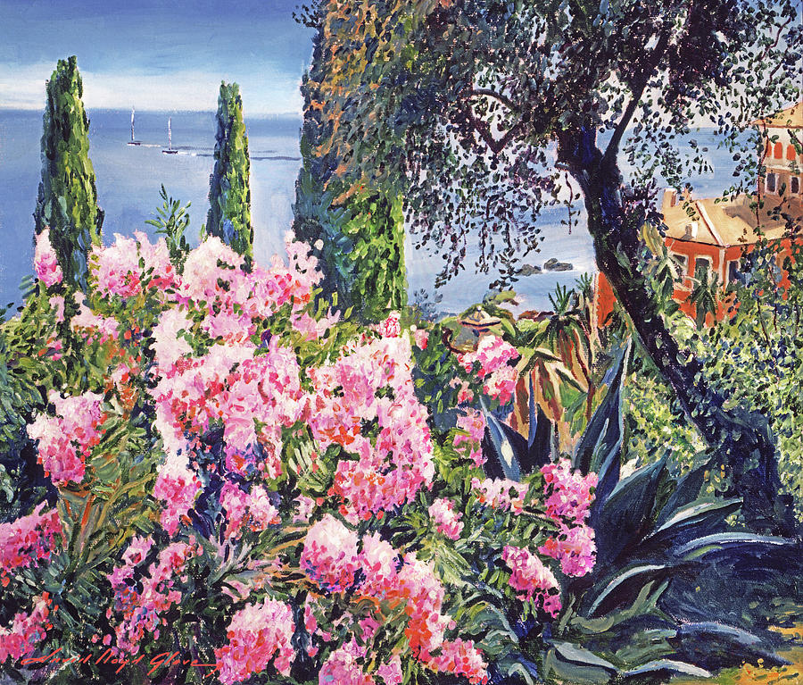 MEDITERRANIAN GARDENS by David Lloyd Glover