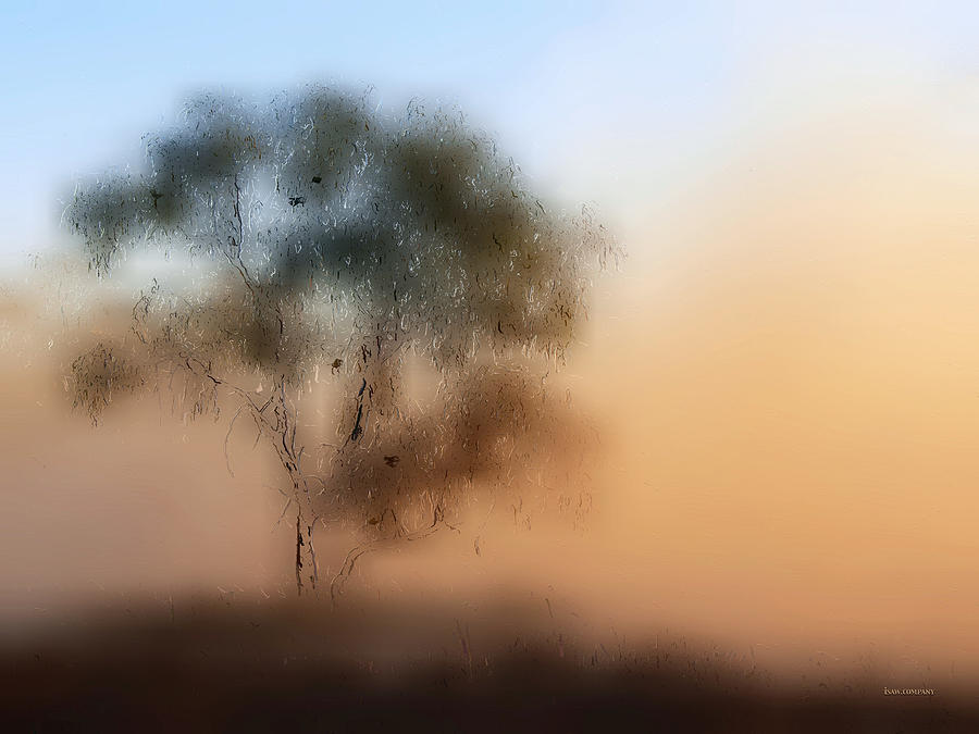 Foggy Digital Art - Meet Me At The Old Foggy Tree by ISAW Company