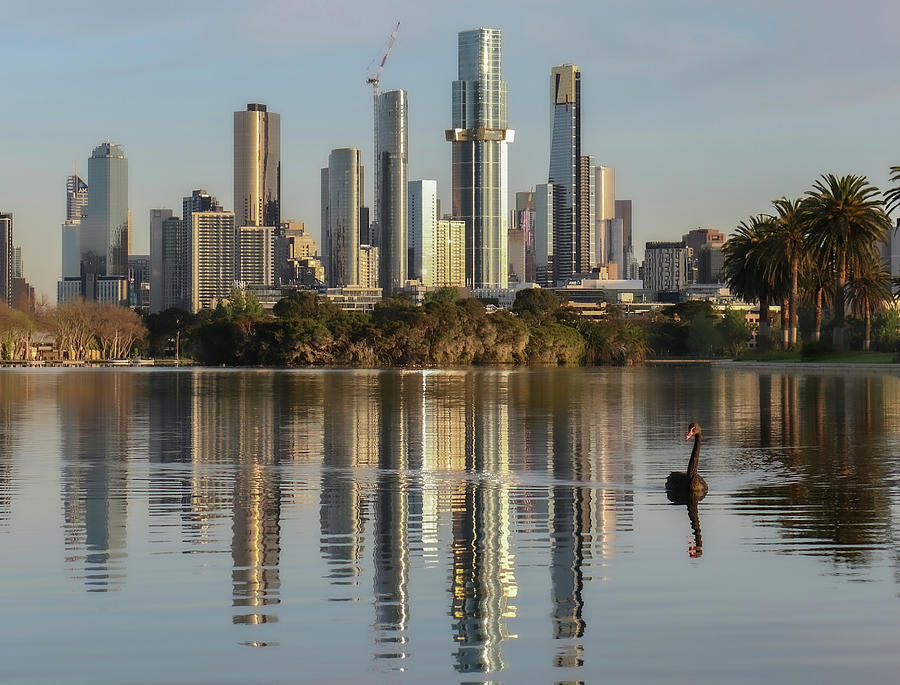 Melbourne Photograph - Melbourne Shines  by Leigh Henningham