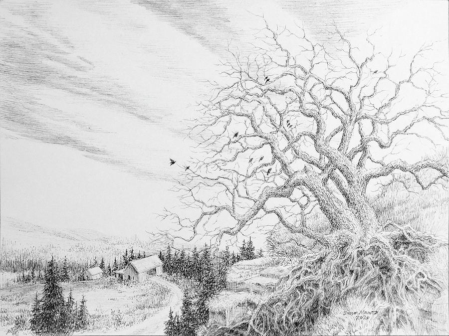 Rustic Drawing - Merle by Steve Mountz