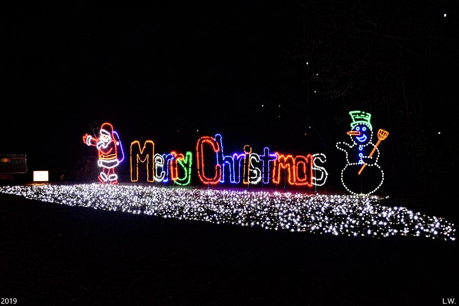 Merry Christmas Lights by Lisa Wooten