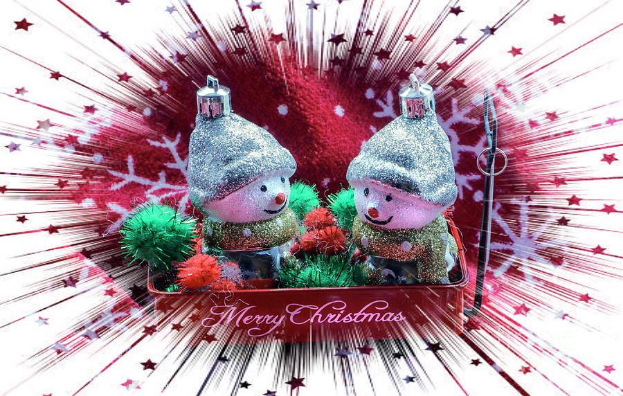 Merry Christmas Wagon Ride Photograph