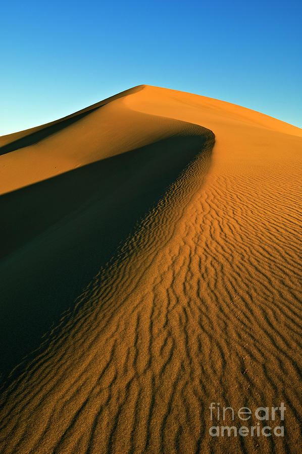 Mesquite Flats sand dunes, Death Valley, California by Neale And Judith Clark