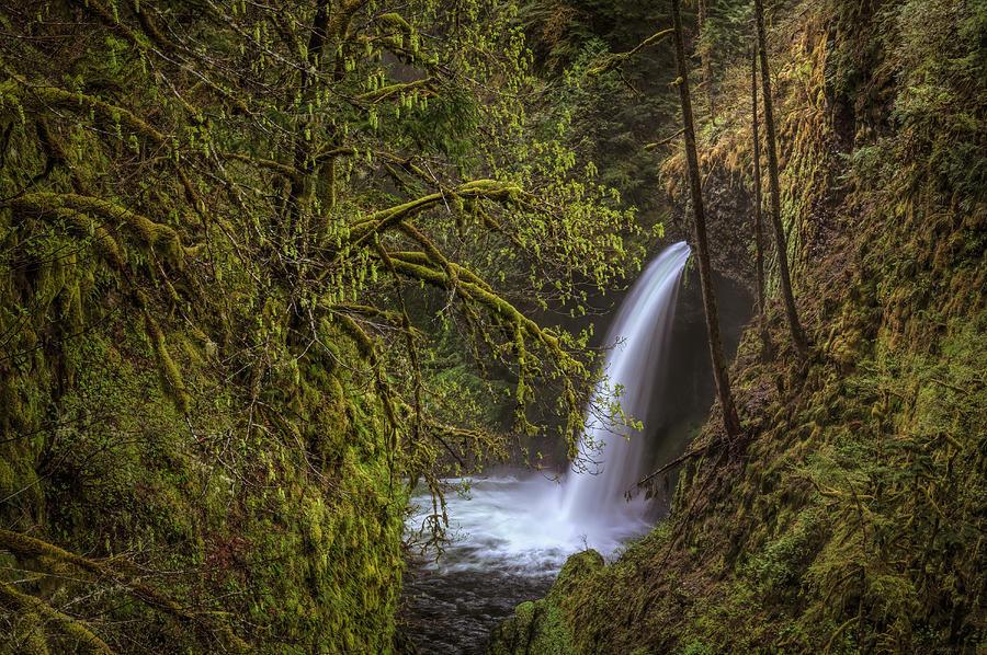 Metlako Falls Photograph