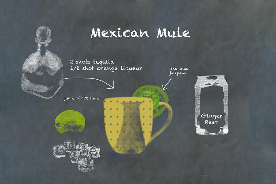 Mexican Mule Cocktail Recipe Photograph