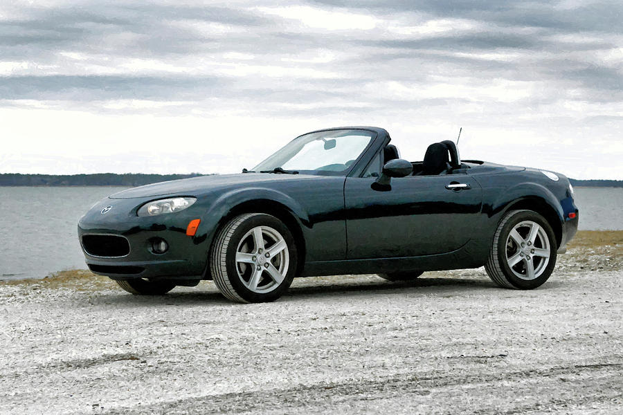 Miata Under the Brush by Bill Swartwout Photography