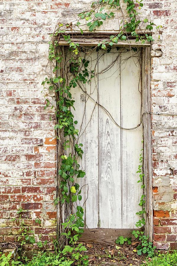 Micanopy Door, Micanopy, Florida by Dawna Moore Photography