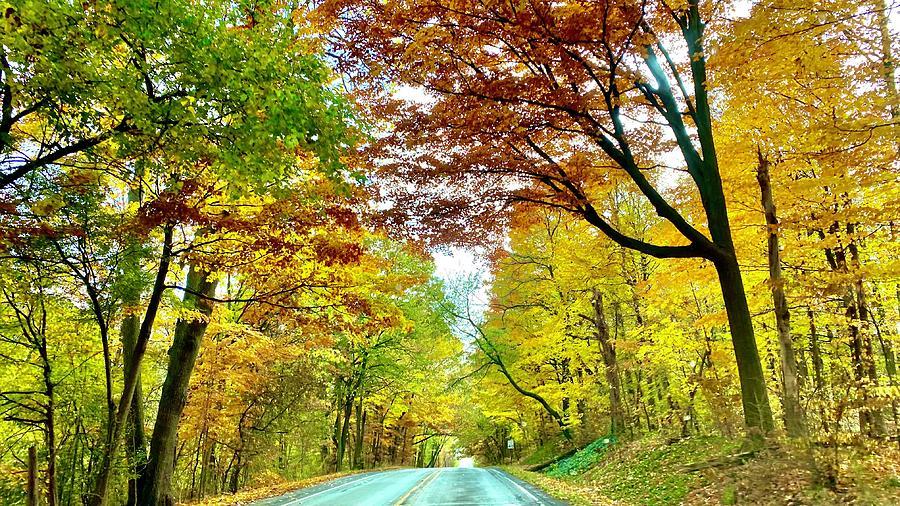Michigan Fall Road Photograph