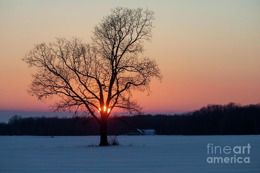 Michigan Winter Sunset Photograph