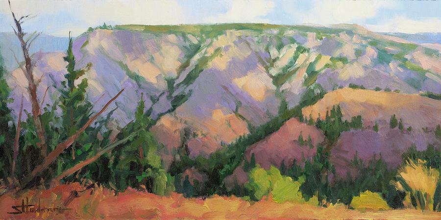 Midday At Chief Joseph Canyon Painting