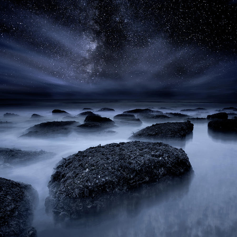 Midnight Blues by Jorge Maia