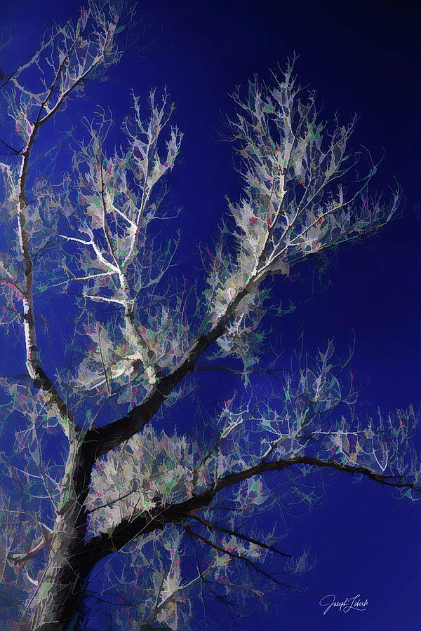 Garden Of The Gods Digital Art - Midnight_Moonlight_20210319 by Joseph Liberti