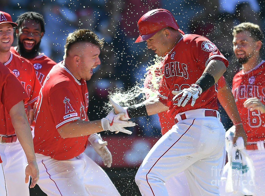 Mike Trout Photograph by John Mccoy