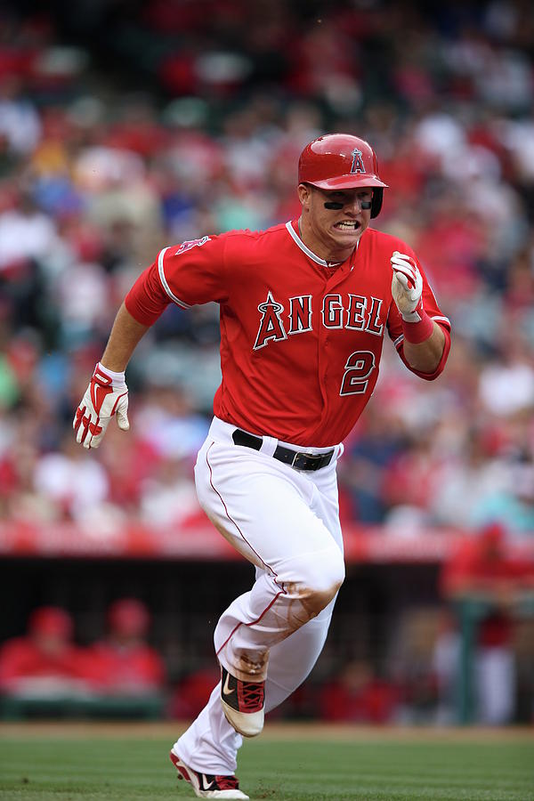Mike Trout Photograph by Paul Spinelli