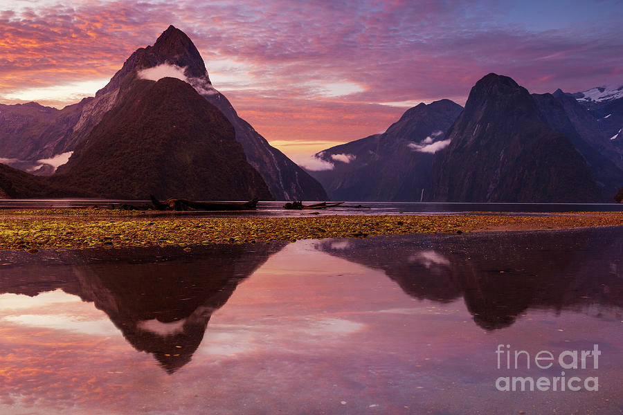 Milford Sound Sunset, New Zealand by Neale And Judith Clark