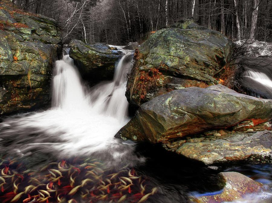 Mill Falls Mindscape by Wayne King
