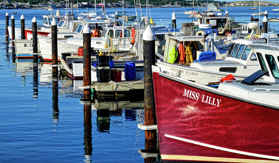 Miss Lilly - Provincetown Harbor Photograph