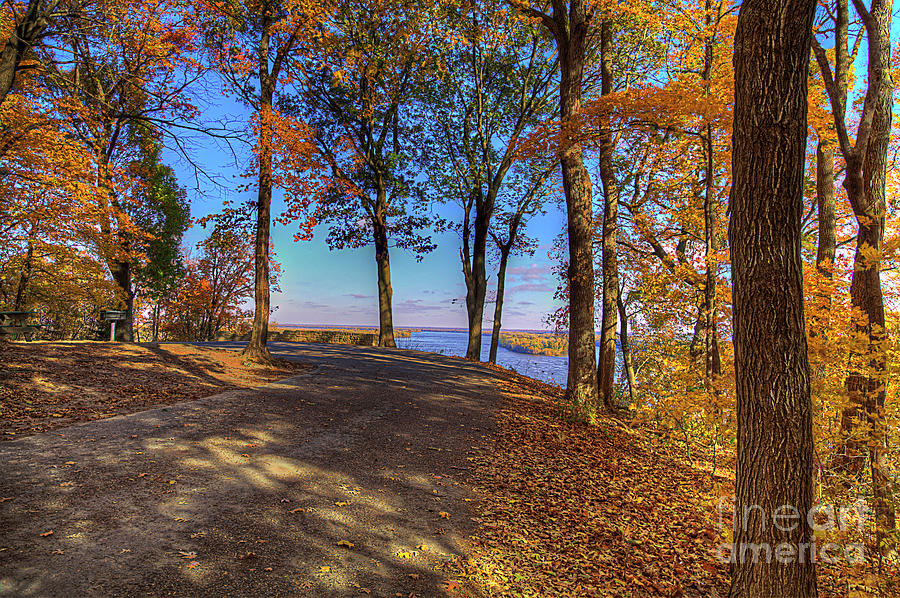 Travel Photograph - Mississippi Through The Trees by Larry Braun