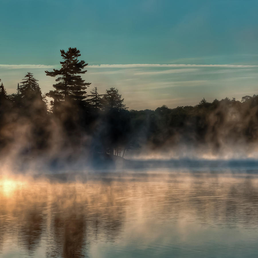 Mist on the Pond by David Patterson
