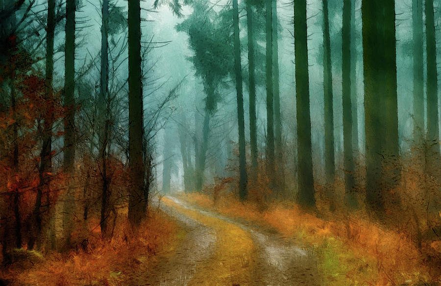 Misty Morning Forest by Movie Poster Prints