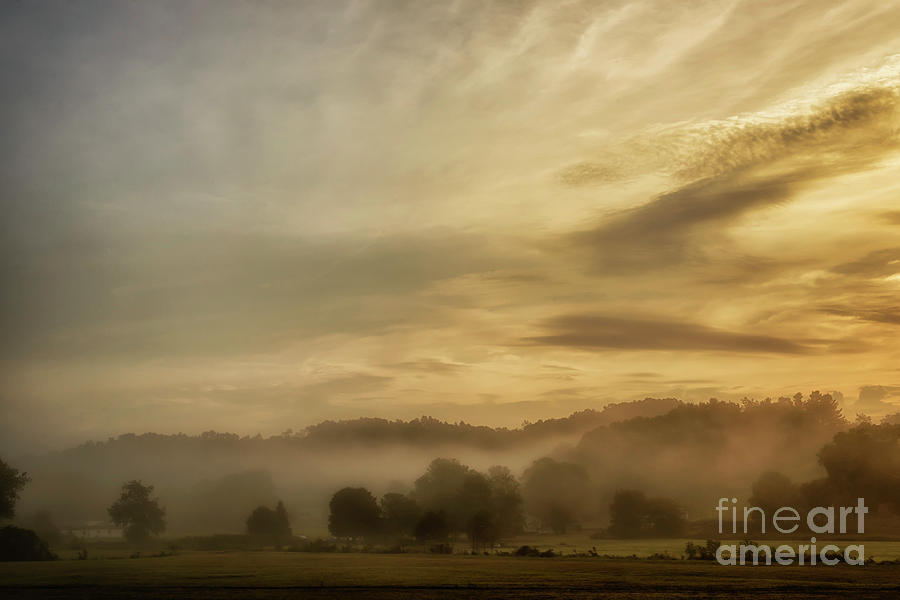 Misty Morning in the Country by Thomas R Fletcher
