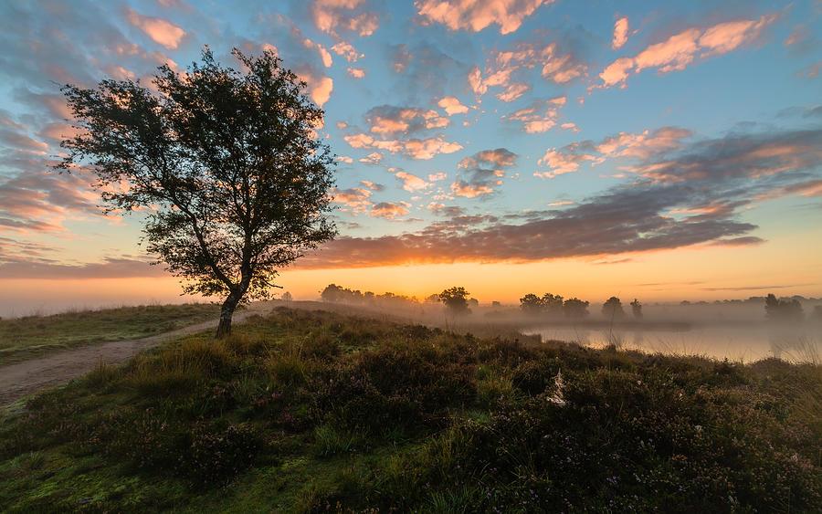 Misty Sunrise Photograph by William Mevissen