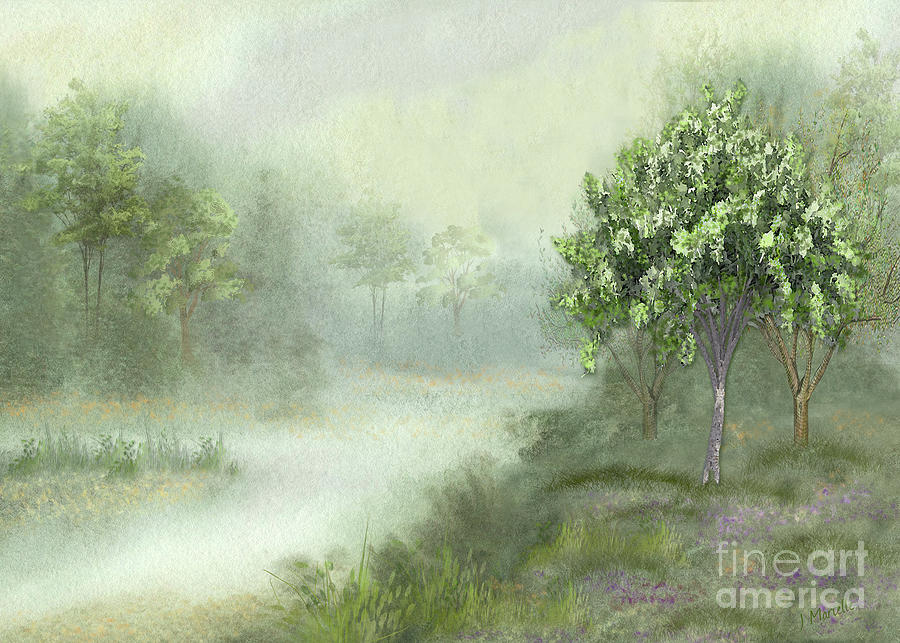 Misty Woodland Stream by J Marielle