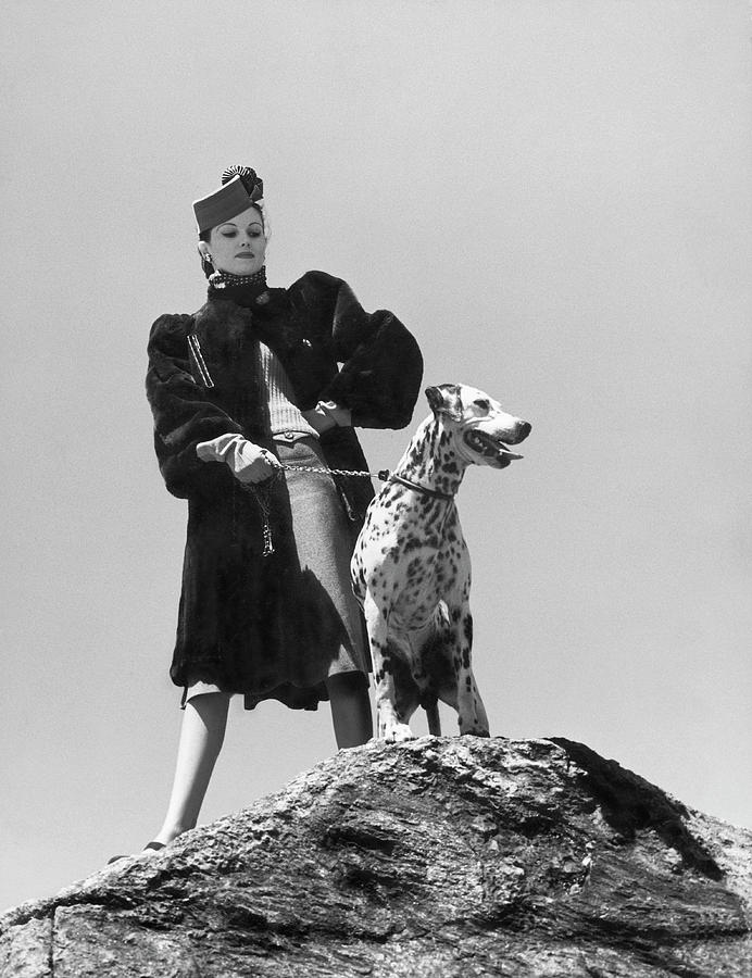 Model With Dalmation Photograph by Toni Frissell