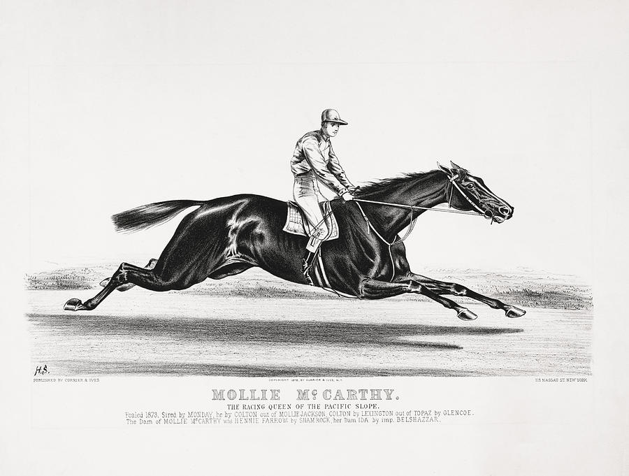 Mollie Mccarthy - The Racing Queen Of The Pacific Slope - Circa 1878 Drawing