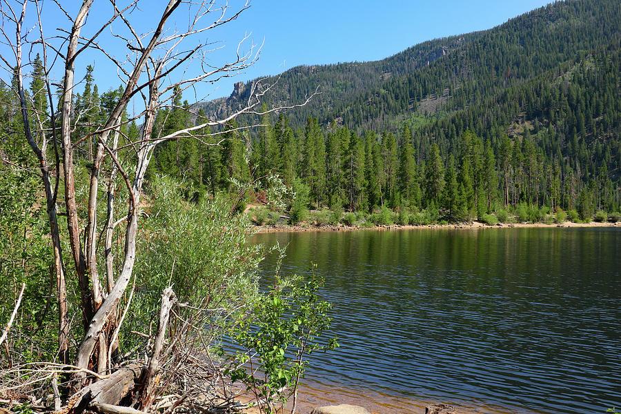 Monarch Lake Photograph