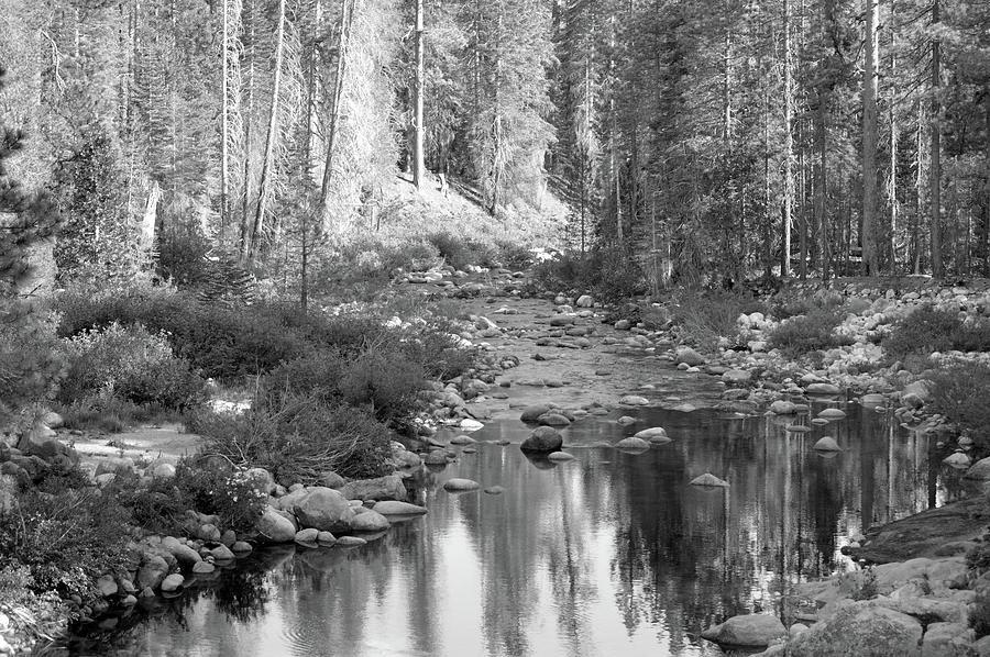 Monochrome Dinkey Creek Photograph
