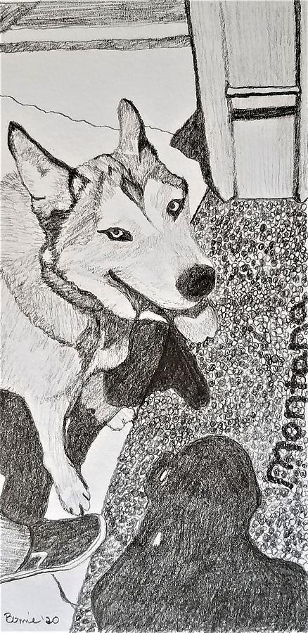 Dog Drawing - Montana by Bonnie McKeegan