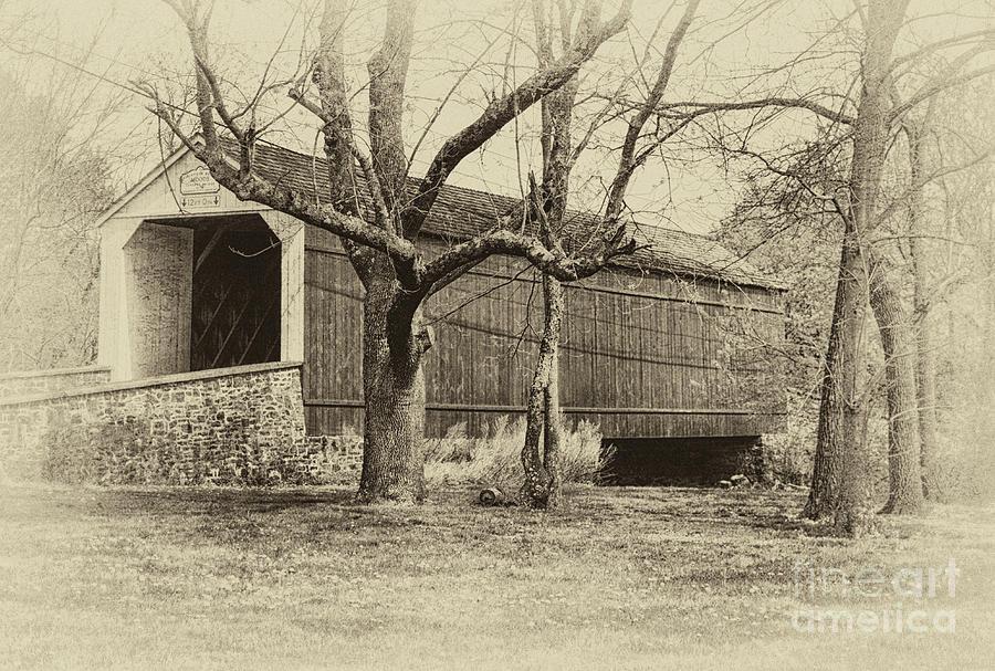 Mood's Covered Bridge by Debra Fedchin
