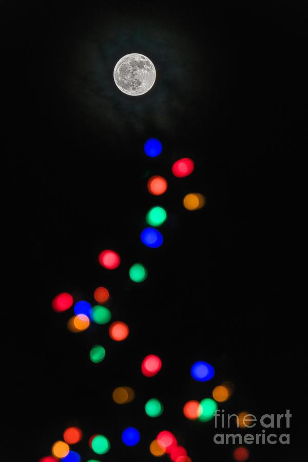 Moon Light by Amfmgirl Photography