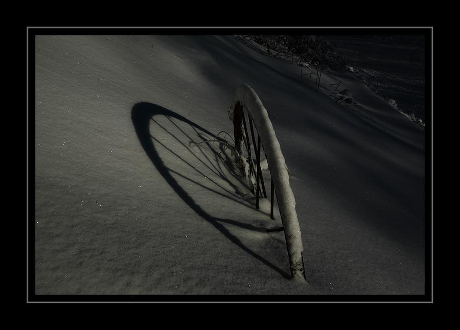 Moonlight Shadow Photograph